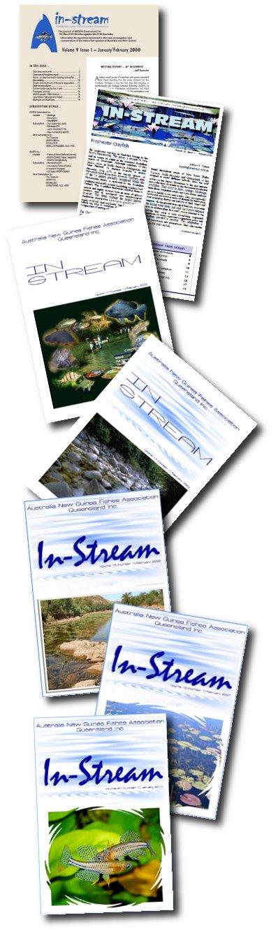 instreamgenerations