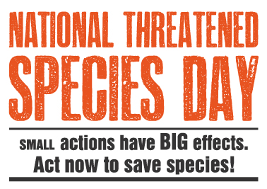 National Threatened Species Day 2013: small actions have BIG effects. Act now to save species!