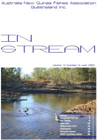 In-Stream magazine cover from June 2003