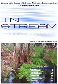 In-Stream 13:05