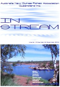 In-Stream 13:06