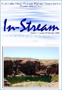 In-Stream 14:06
