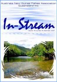 In-Stream 16:06