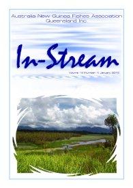 In-Stream 19:01
