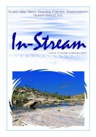 In-Stream 19:02