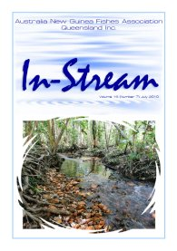 In-Stream 19:07