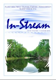 In-Stream 19:11