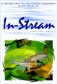 In-Stream 20:01