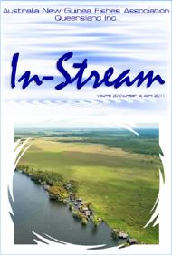 In-Stream 20:04