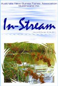 In-Stream 20:05
