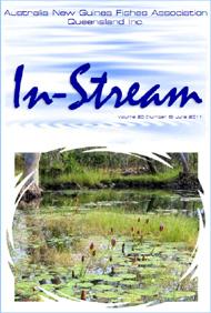 In-Stream 20:06