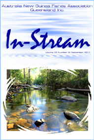 In-Stream 20:09