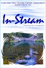 In-Stream 20:10