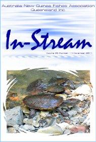 In-Stream 20:11