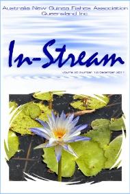 In-Stream 20:12