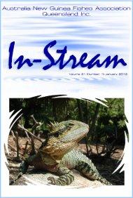 In-Stream 21:01