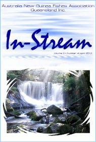 In-Stream 21:04