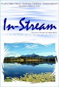 In-Stream 21:08