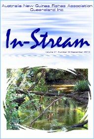 In-Stream 21:09
