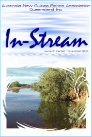 In-Stream 21:11
