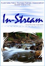 In-Stream 22:04