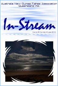 In-Stream 22:06
