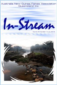 In-Stream 22:07, July 2013