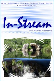 In-Stream 22:08, July 2013