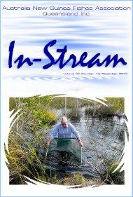 In-Stream 22:12
