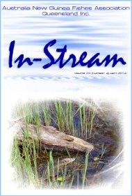 In-Stream 23:04