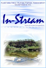 In-Stream 23:08