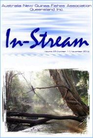 In-Stream 23:11